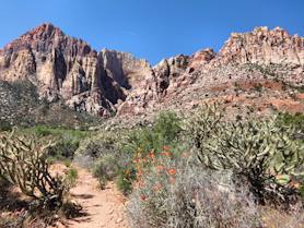 Juniper Canyon